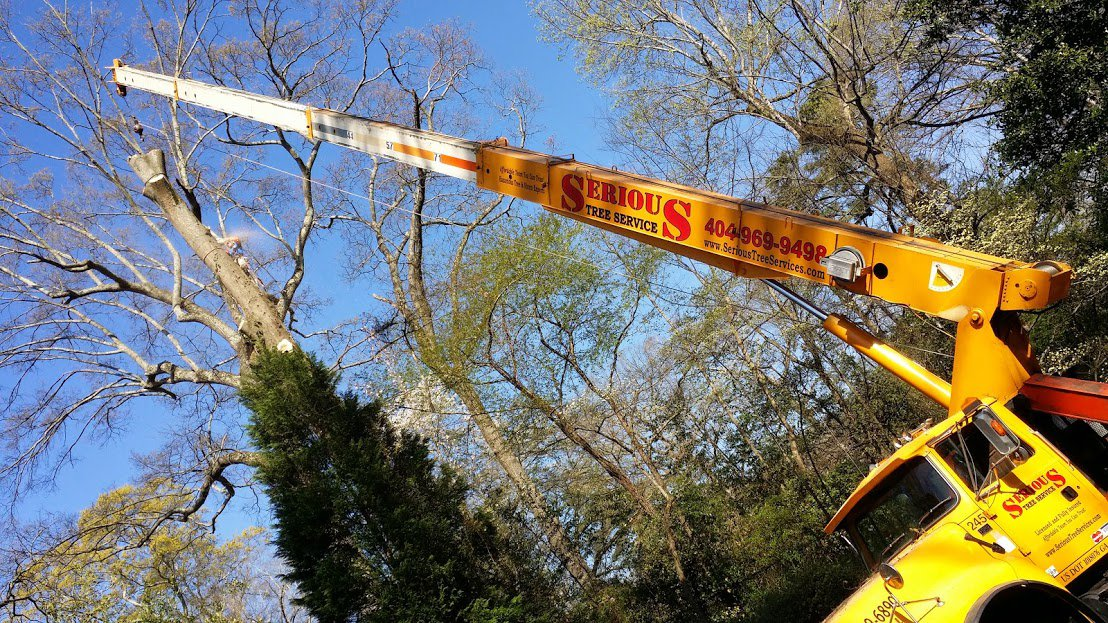 Crane Services | Tree Removal in Atlanta